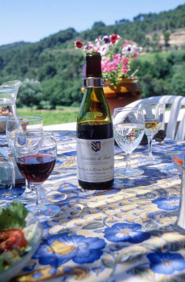 Cotes du Rhone Wine Picnic, Provence, France